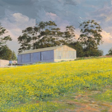 Andrew Cooper   The Studio Art Gallery - Canola Fields Overberg, Acrylic on Canvas, 60cm by 40cm