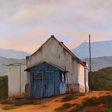 Donna McKellar | The Studio Art Gallery | Unpetrified - The Blue Shed 900