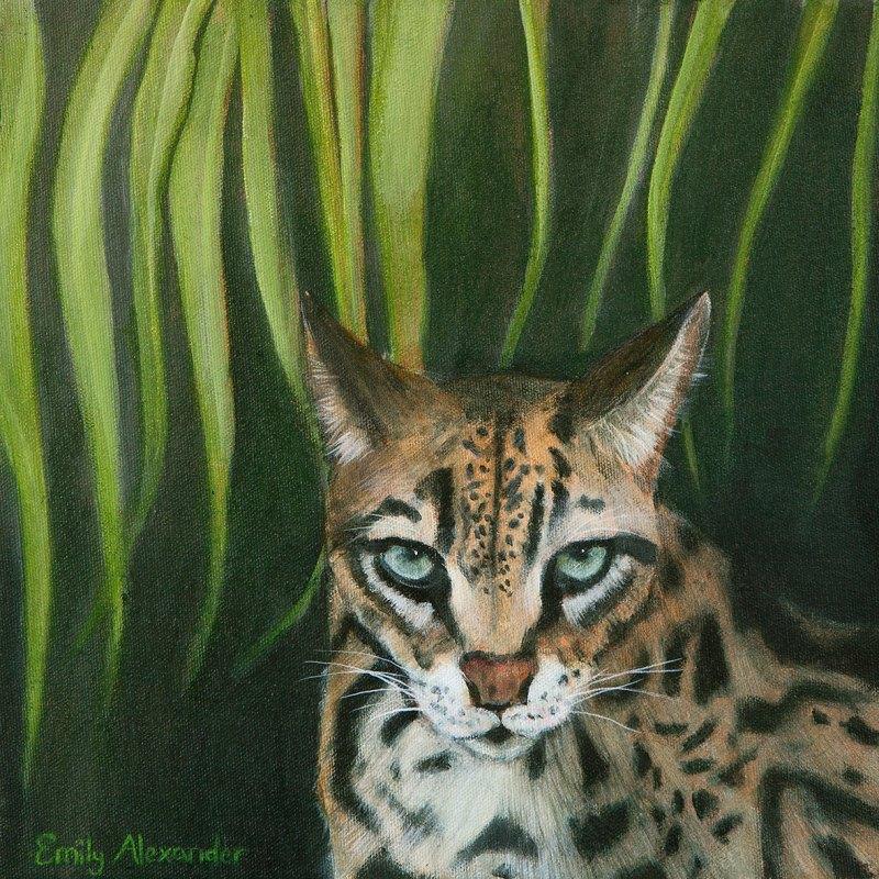 The Studio Art Gallery   2021 Mandela Day Block Art Exhibition   Emily Alexander - Into The Wild