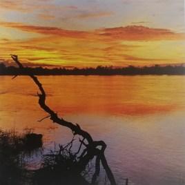 The Studio Art Gallery   2021 Mandela Day Block Art Exhibition   Georgina Jones - Fire On The Zambezi
