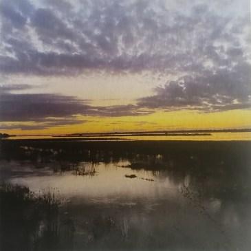 The Studio Art Gallery | 2021 Mandela Day Block Art Exhibition | Georgina Jones - Mirror On The Zambezi