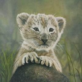 The Studio Art Gallery   2021 Mandela Day Block Art Exhibition   Neelu Dole - Lion Cub