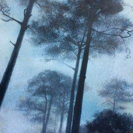The Studio Art Gallery   2021 Mandela Day Block Art Exhibition   Paula DuBois - Seeing The Wood For The Trees I