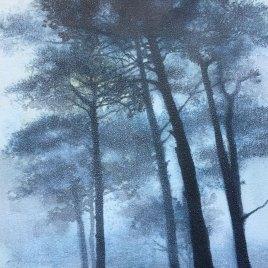 The Studio Art Gallery   2021 Mandela Day Block Art Exhibition   Paula DuBois - Seeing The Wood For The Trees II