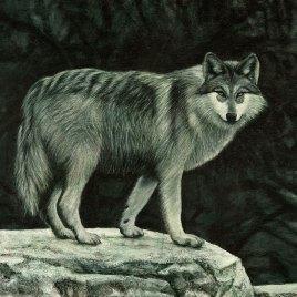 The Studio Art Gallery   2021 Mandela Day Block Art Exhibition   Sasha Alexander - Lone Wolf