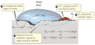 reaksi korosi pada besi