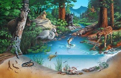 13/05/2021· sistem klasifikasi biologi membagi organisme menjadi berbagai kategori atau tingkatan taksonomi, dimulai dengan domain, urutan tertinggi kehidupan. Ekosistem - Pengertian, Komponen, Jaring Makanan, Siklus