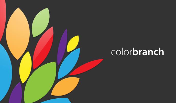 colorbranch Splash Screen
