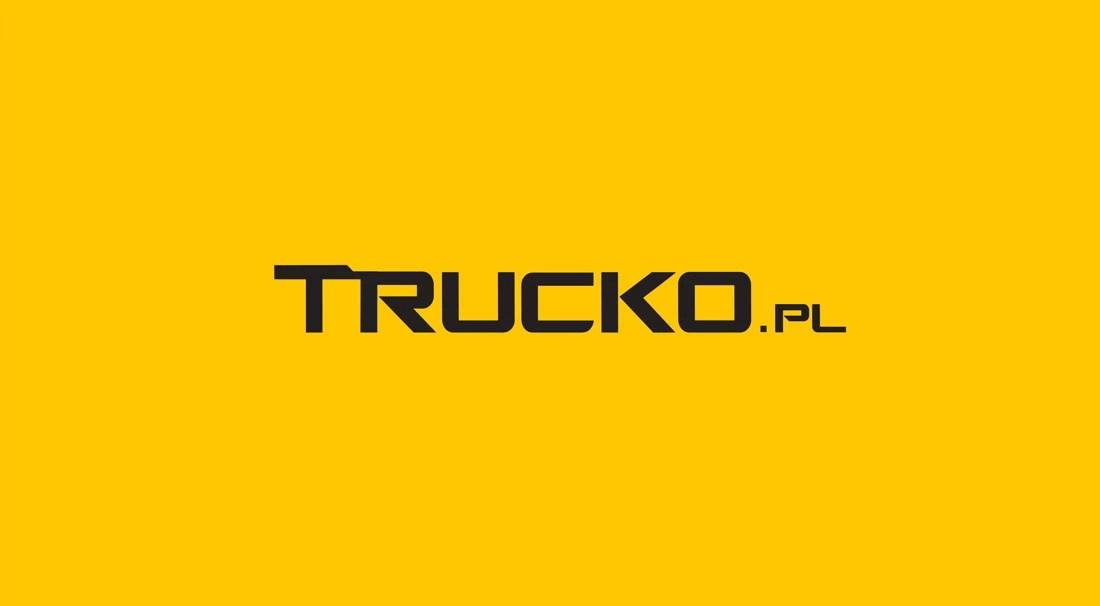 grafika logo wersje