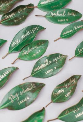 Green leaves : http://www.kateandcompanydesign.com/work/