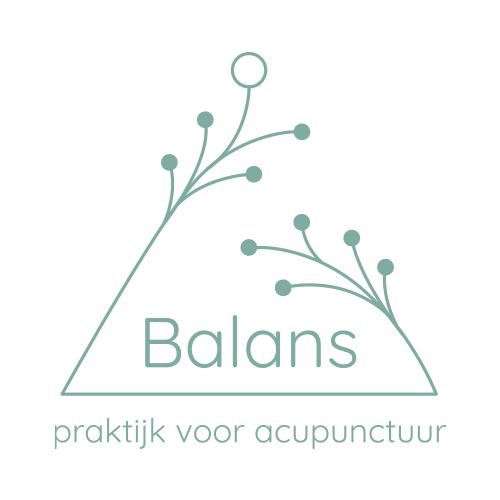 Balans1
