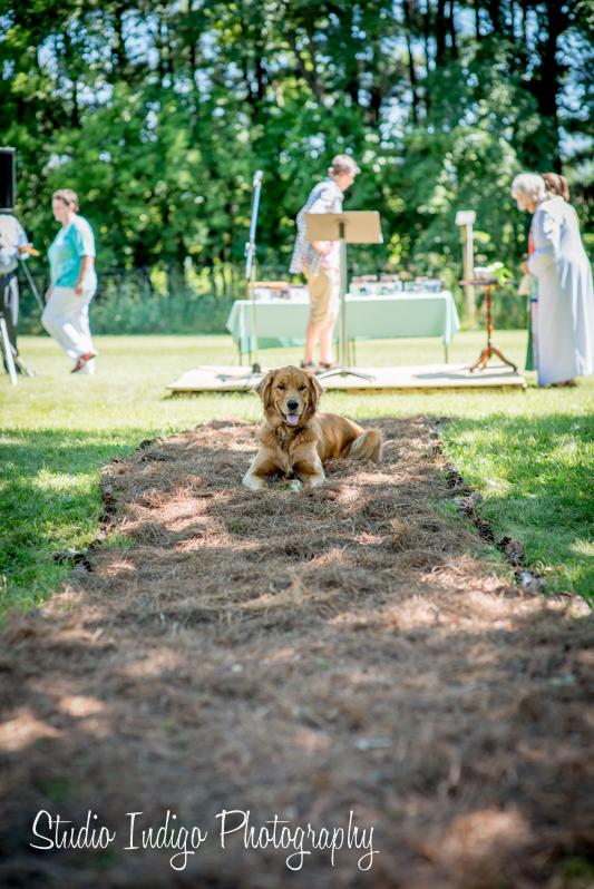 stoughton-outdoor-wedding-01