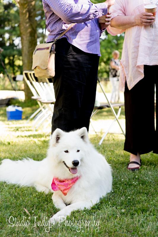 stoughton-outdoor-wedding-24