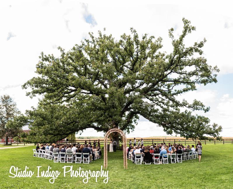 sugarland-barn-wedding-01