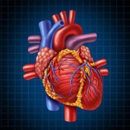 cardiologia a domicilio milano