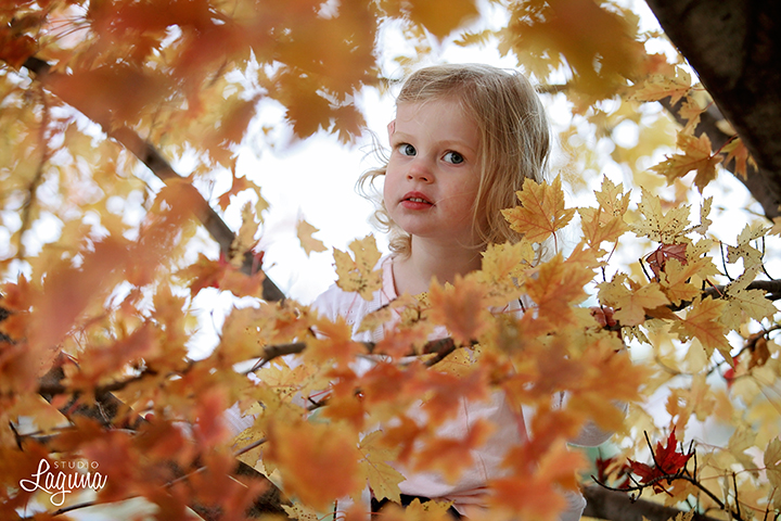 orchardfamilyportraits0008