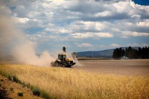 campo e macchina agricola al lavoro