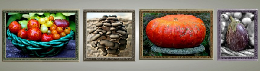 """A Selection from the Portfolio """"On Vegetables"""" Arboretum (Not to Scale.) See Individual Collection Pages Below for Prices and Editions."""