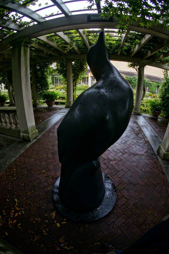 """Passenger Pigeon"" by Todd McGrain - View # 4"