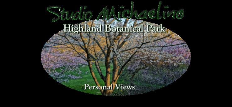 Highland Park4Portfolio