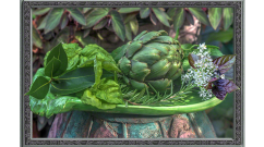Still Life for Artichoke