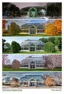 Five Seasons of the House of Glass - Click to See Poster and related images