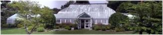 lamberton2006panow