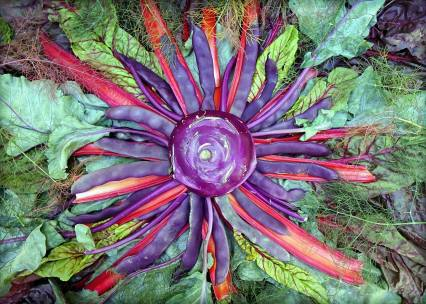 """Another creation from my culinary, home-grown, backyard stellar nursery. With Pole Beans """"Trionfo Violetto"""", Ruby Swiss Chard, Bronze Fennel and Kohlrabi Greens and Scapes. (Obviously influenced by the jammin' 1960s.)"""