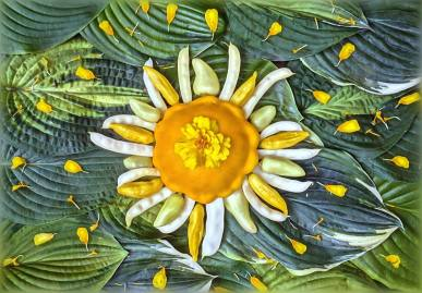 """Sol Hot Gogh: Here comes the sun as a yellow Patty-Pan Squash, Hot pepper """"Dancing Spirits"""", Ecuadorian """"Hot Lemon"""" Pepper and Wax Romano Pole Beans. Lots of Hostas (luv em) and the stellar core (and rays) made from a marigold that planted itself in our garden. (Thank you Vincent, we still love you so.)"""