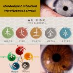 Iridologia e medicina tradizionale cinese