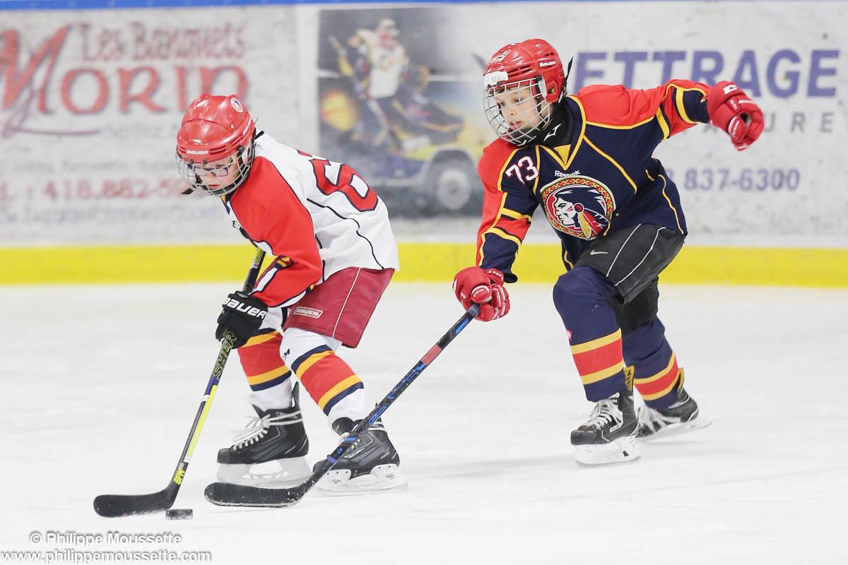 Deux hockeyeurs