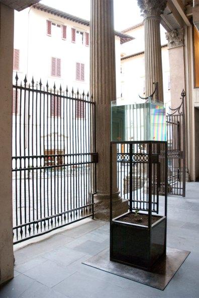 Display, Museo Marino Marini, Firenze