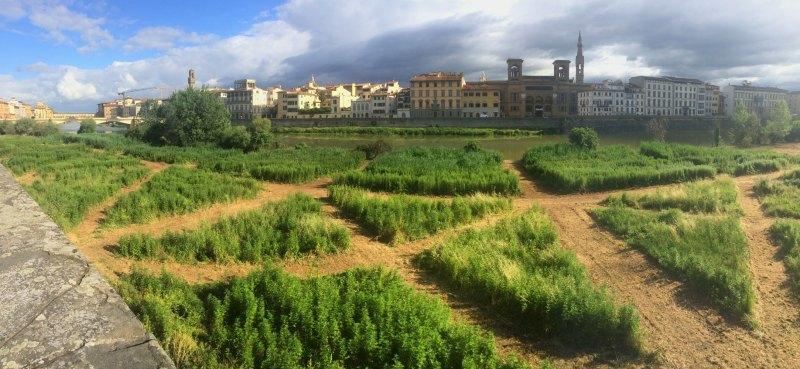 esteso-terzo-giardino