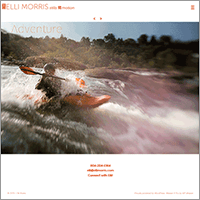 elli morris website designed by shelli - link to case study