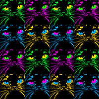 brightly colored pop art cat faces on black background surface repeat pattern design by shelli