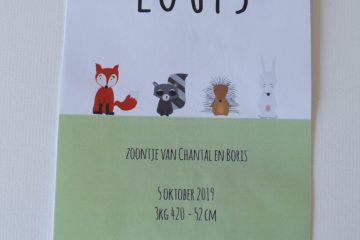 Geboortekaartje op maat Louis