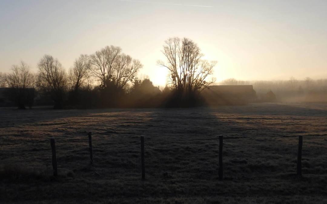 Feuilles vives de l'école du paysage #7 – Le projet des Métairies : une agriculture collective sur des terres urbaines ?