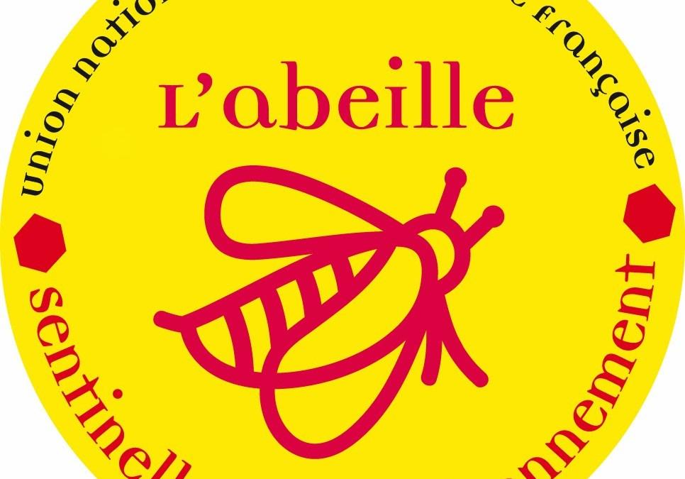 S'engager pour les abeilles dans le Loir-et-Cher : quelle situation, quelles solutions ?