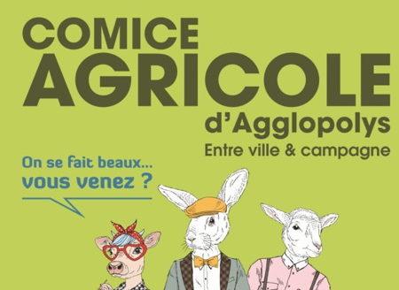 Info #5 : Comice agricole, poules et ambassadeur du tri