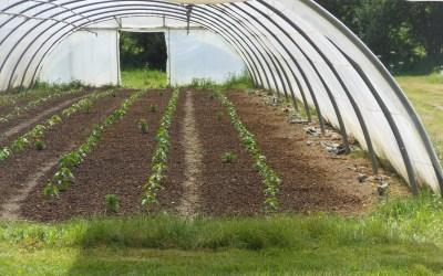 La Chose Commune Saison 2 – Dossier Agriculture Biologique 1