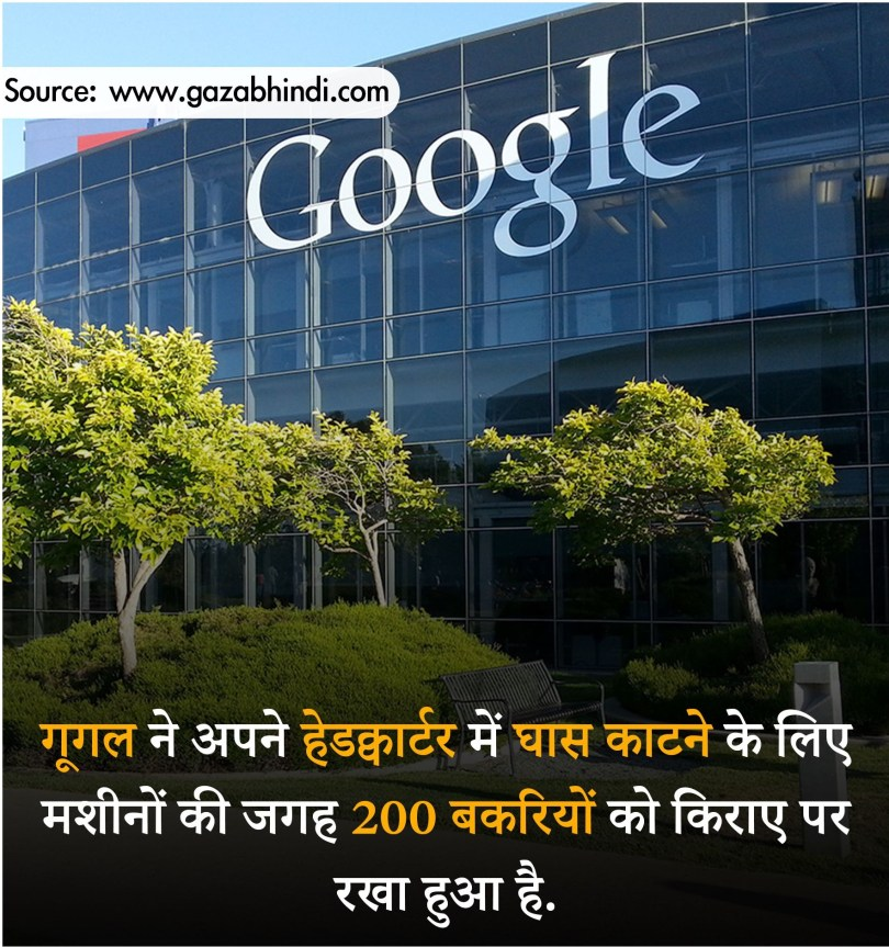 10 Important facts of Google-facts 2020