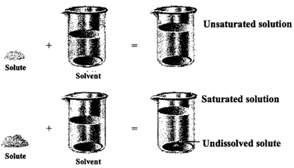 If we add any more solute to a saturated solution of the