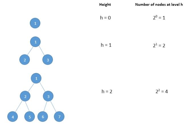 The basics of Binary Trees   Study Algorithms