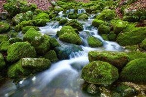 Waterfall, beautiful nature scene