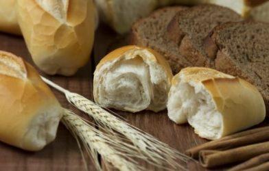 Bread rolls, grains