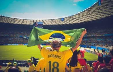 Soccer fan holding flag
