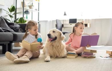 Children reading books to dog