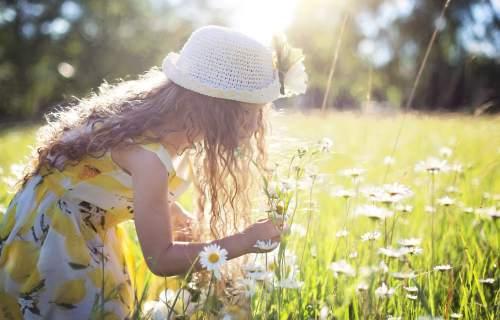 Little girl picking daisies