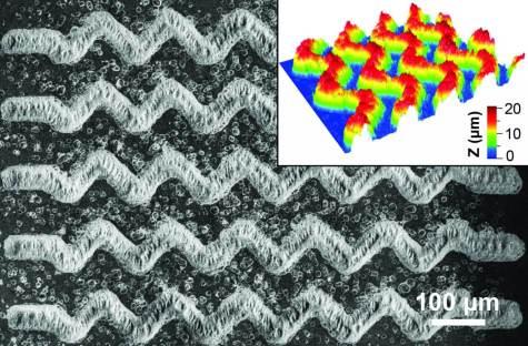 EV-CLUE chip pattern