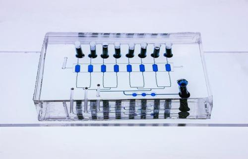"""Nanopatterned """"Lab-On-A-Chip"""" Noninvasively Detects Early and Advanced Breast Cancer"""